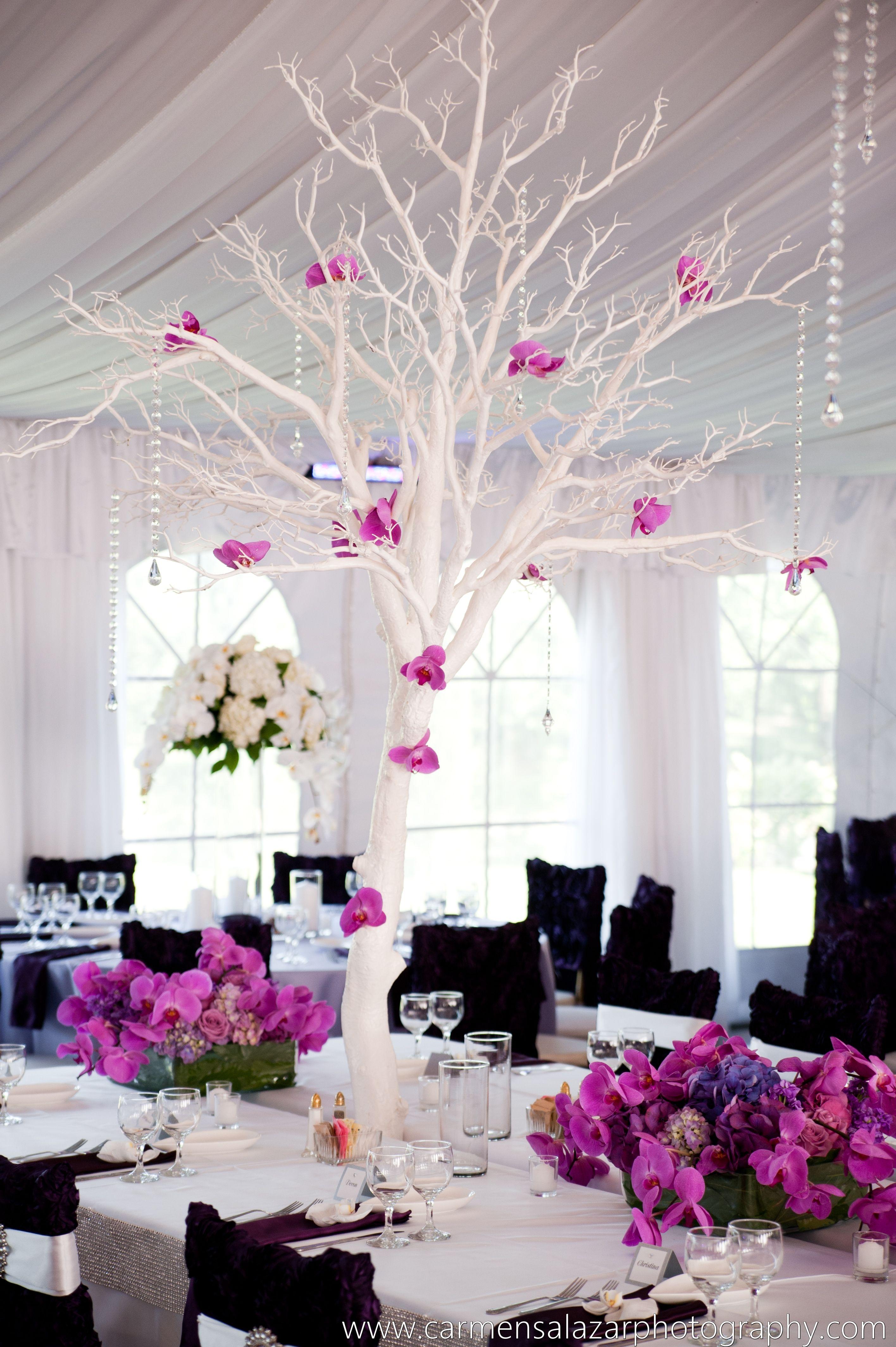 Floral Design www.visualimpact-design.com Carmen Salazar Photography ...