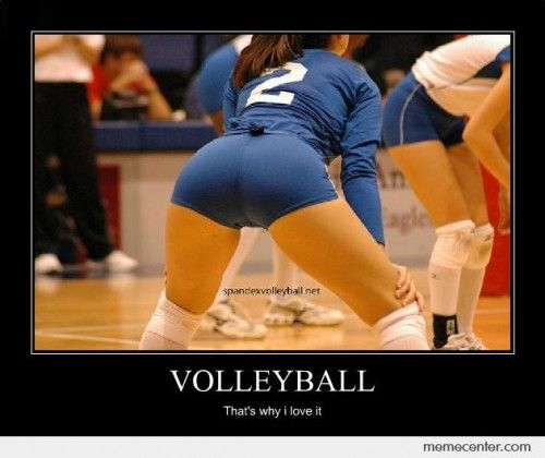 a728186b29790983ab0398d638eea4eb volleyball girls in short shorts meme yahoo image search results