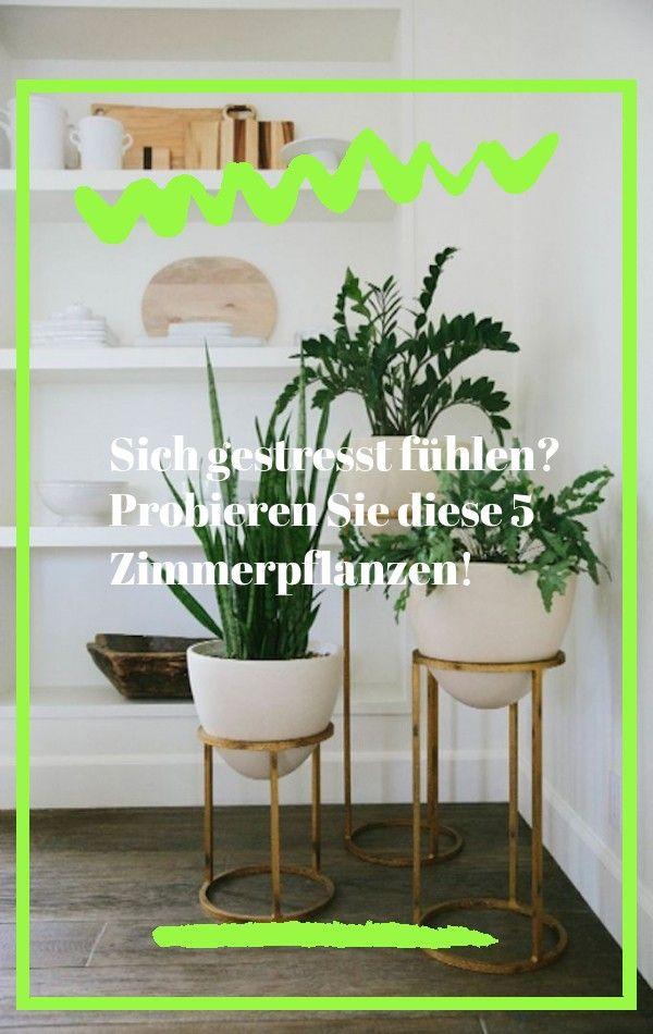 Wo Finde Ich Einen Garden Tiered Indoor Plant Stand Shop Ballard Designs Wohnaccessoires Um Neues Terrassendekor Mit Flai In 2020 Plants Home Decor Decals Home Decor
