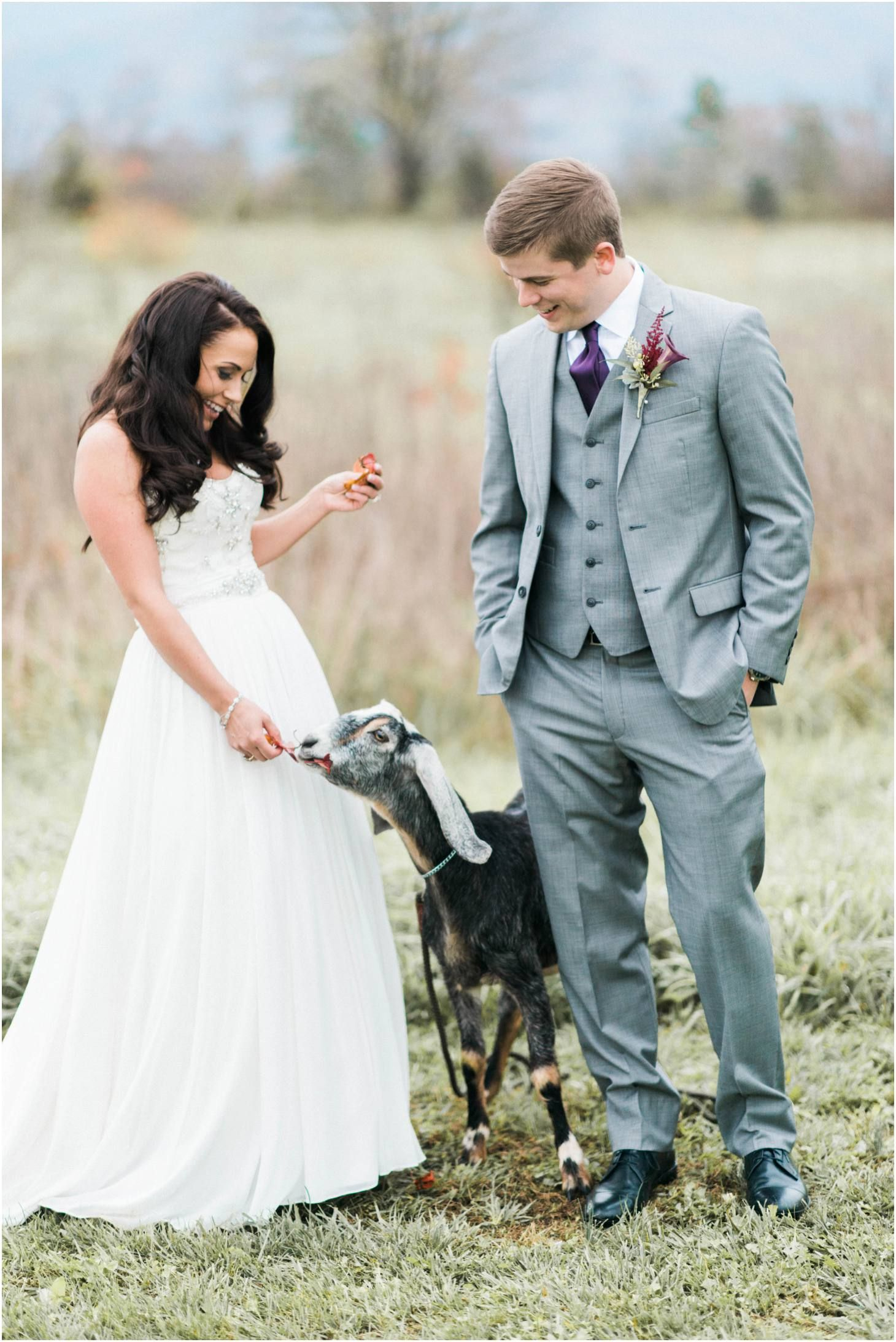 Jillian Michaels Wedding.Kim Stockwell Photography Jillian Michael Khimaira Farms Luray Va