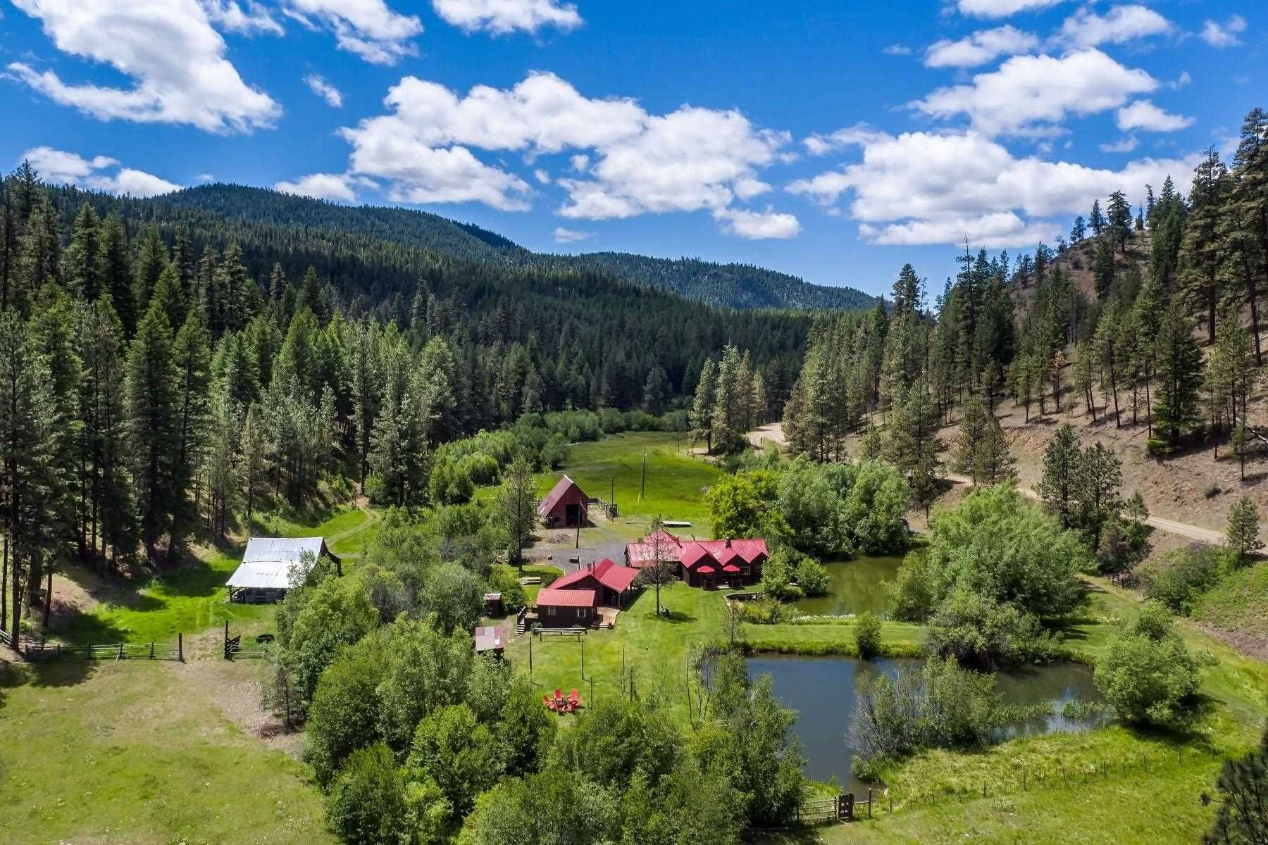 Lakin Springs Ranch in 2020   Prineville, Oregon forest ...
