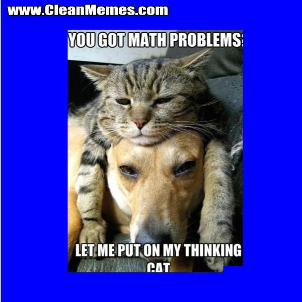You Got Math Problems Clean Memes The Best The Most Online Math Memes Animal Memes Clean Math Memes Funny