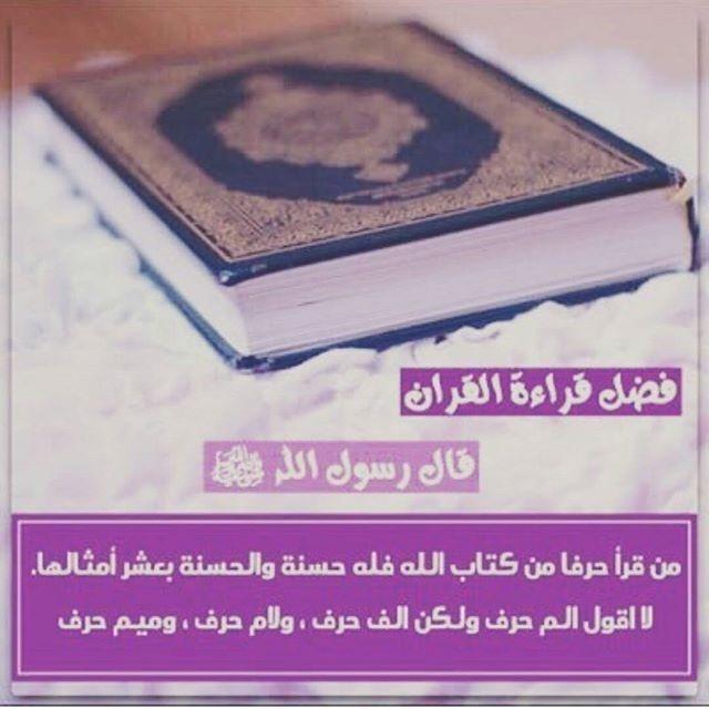 Geordi The Pug Blog Book Reader Quran Blog