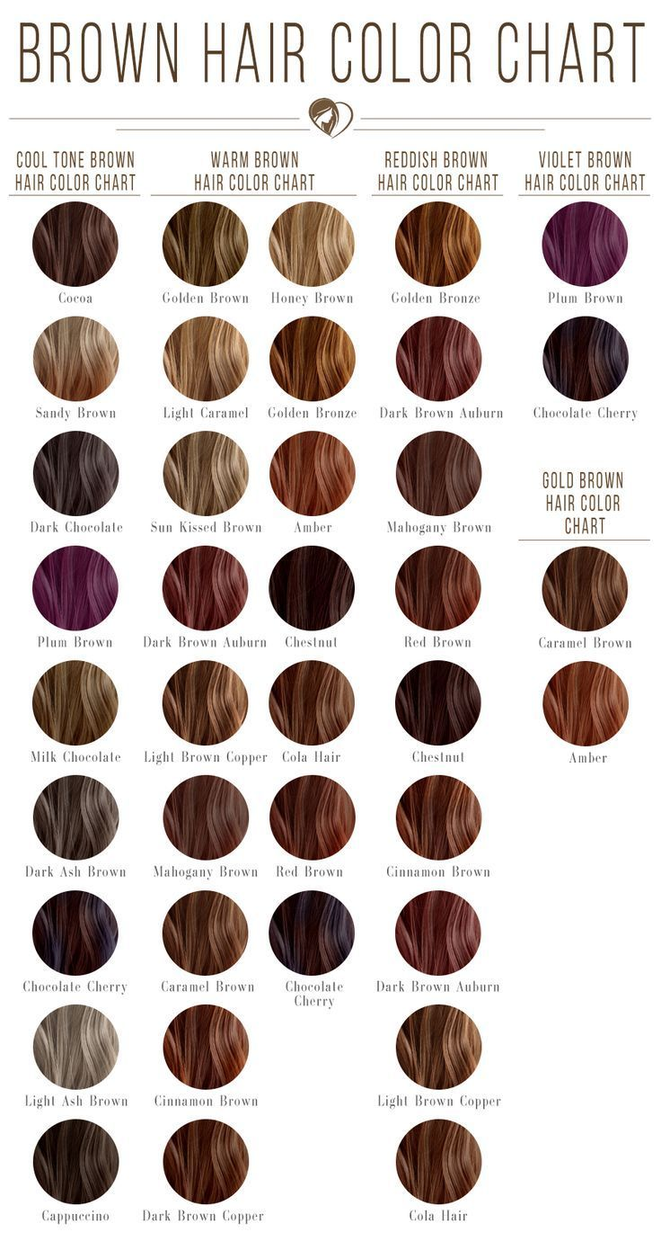 24 Shades Of Brown Hair Color Chart To Suit Any Complexion Hair Color Chart Hair Color Chart Brown Hair Shades Light Hair Color