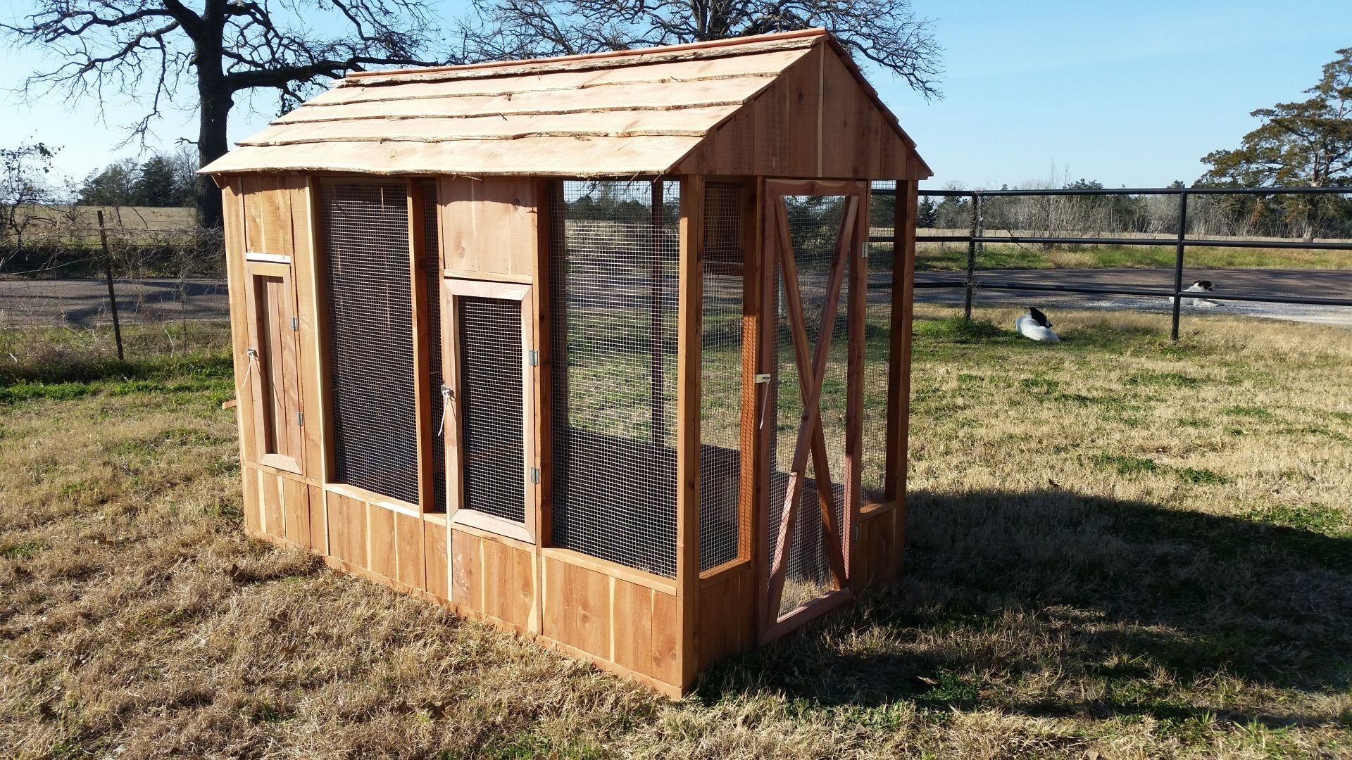 Chicken Coops Bastrop Coops Dog Houses Chicken