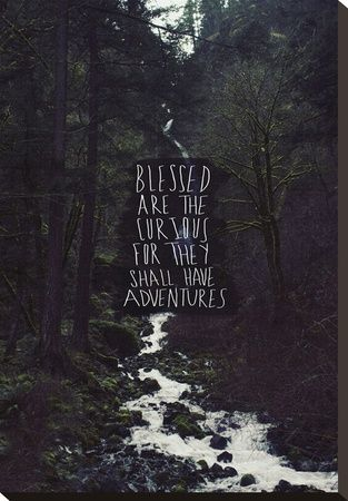 'Blessed Are The Curious For They Shall Have Adventures' Stretched Canvas Print - Leah Flores | Art.com