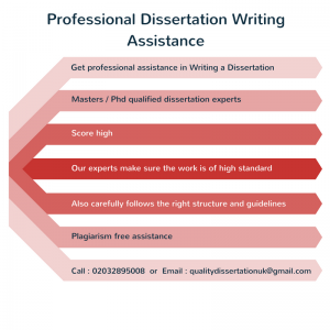 best websites to write a custom powerpoint presentation American Undergrad Vancouver 108 pages US Letter Size professional Standard