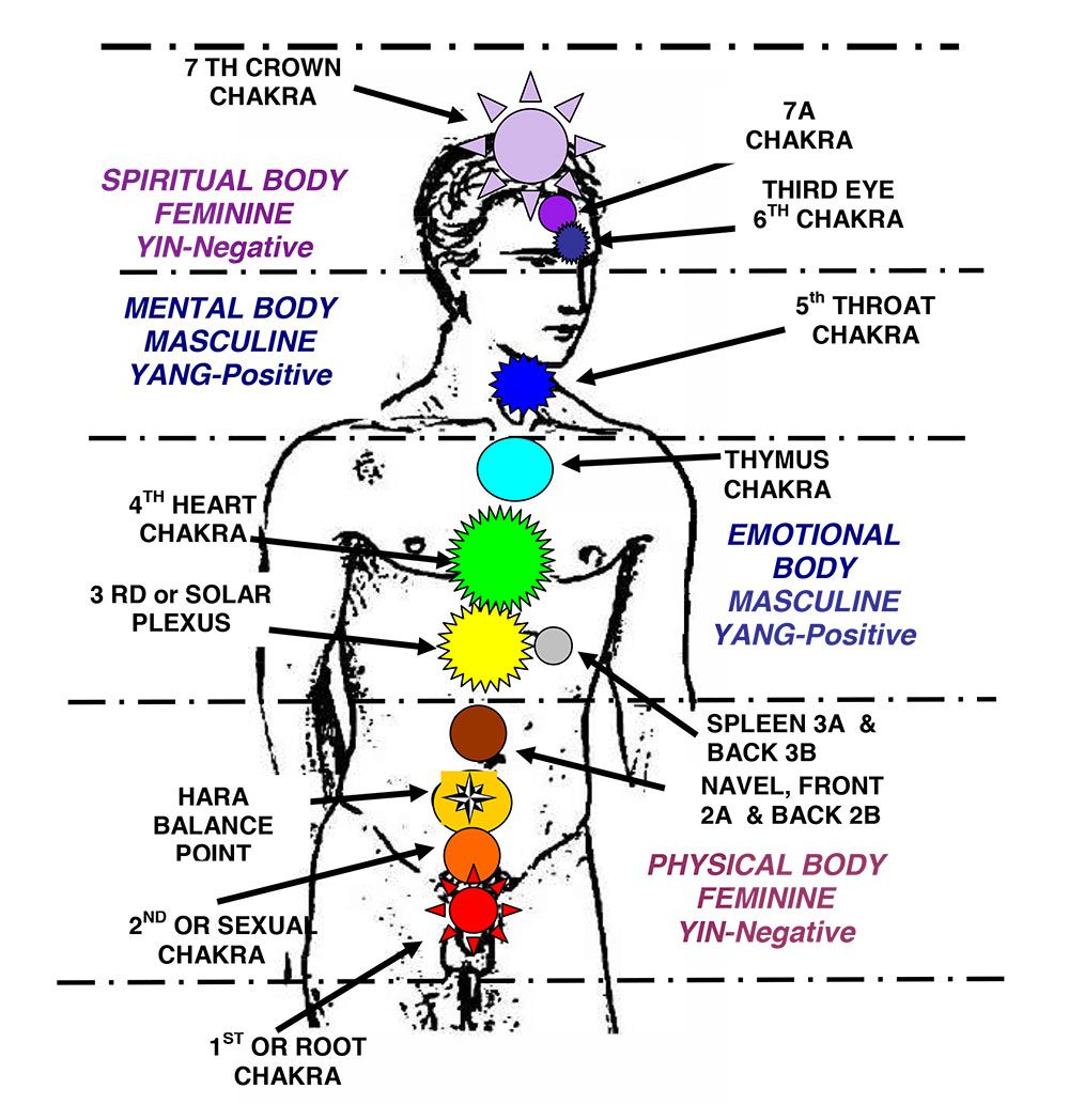the ultimate guide to chakra meditation how to activate and balance the 7 chakras by jerriann j taber ph d chakra diagram in the body  [ 1000 x 1048 Pixel ]
