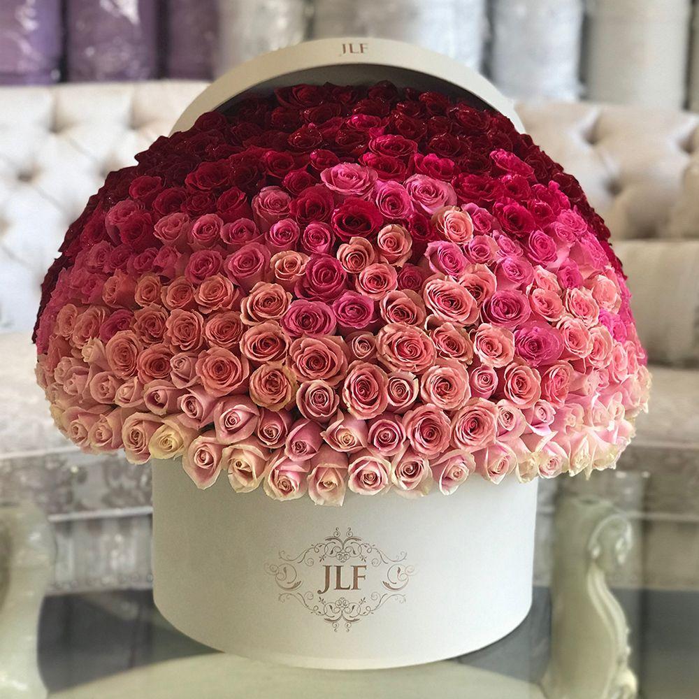 Signature 250 Ombre JLF Flower Boutique in Los Angeles