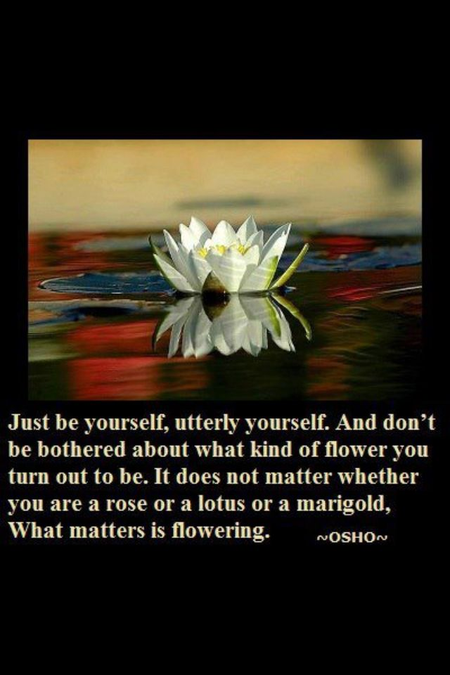 Do You Suppose She S A Wildflower Lewis Carroll Osho Quotes On Life Osho Spiritual Quotes