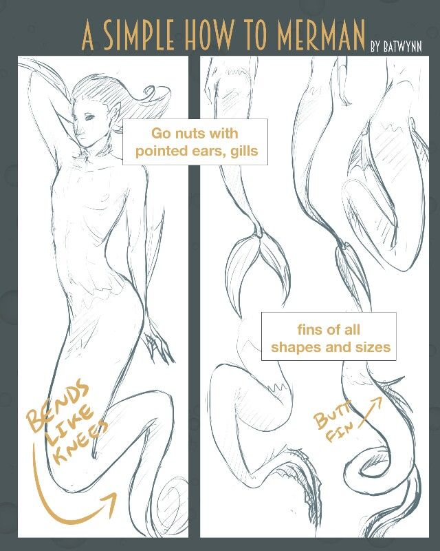 How To Draw A Mermaid Merman Graphic Novel Illustration Sea Monster Art Anime Mermaid