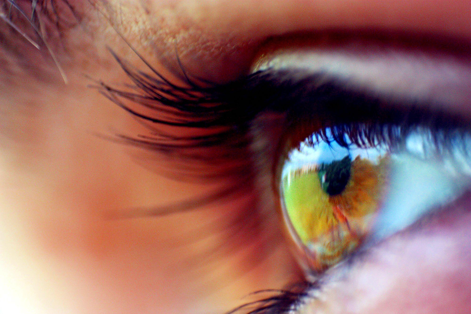 Beautiful Eyes Lashes Eyes Art Make Up Big Eyelashes
