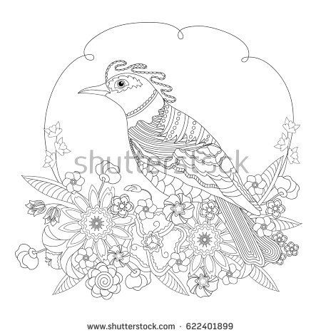 Fantasy Bird In Flowers Coloring Book For Adults And Children Black White Vector
