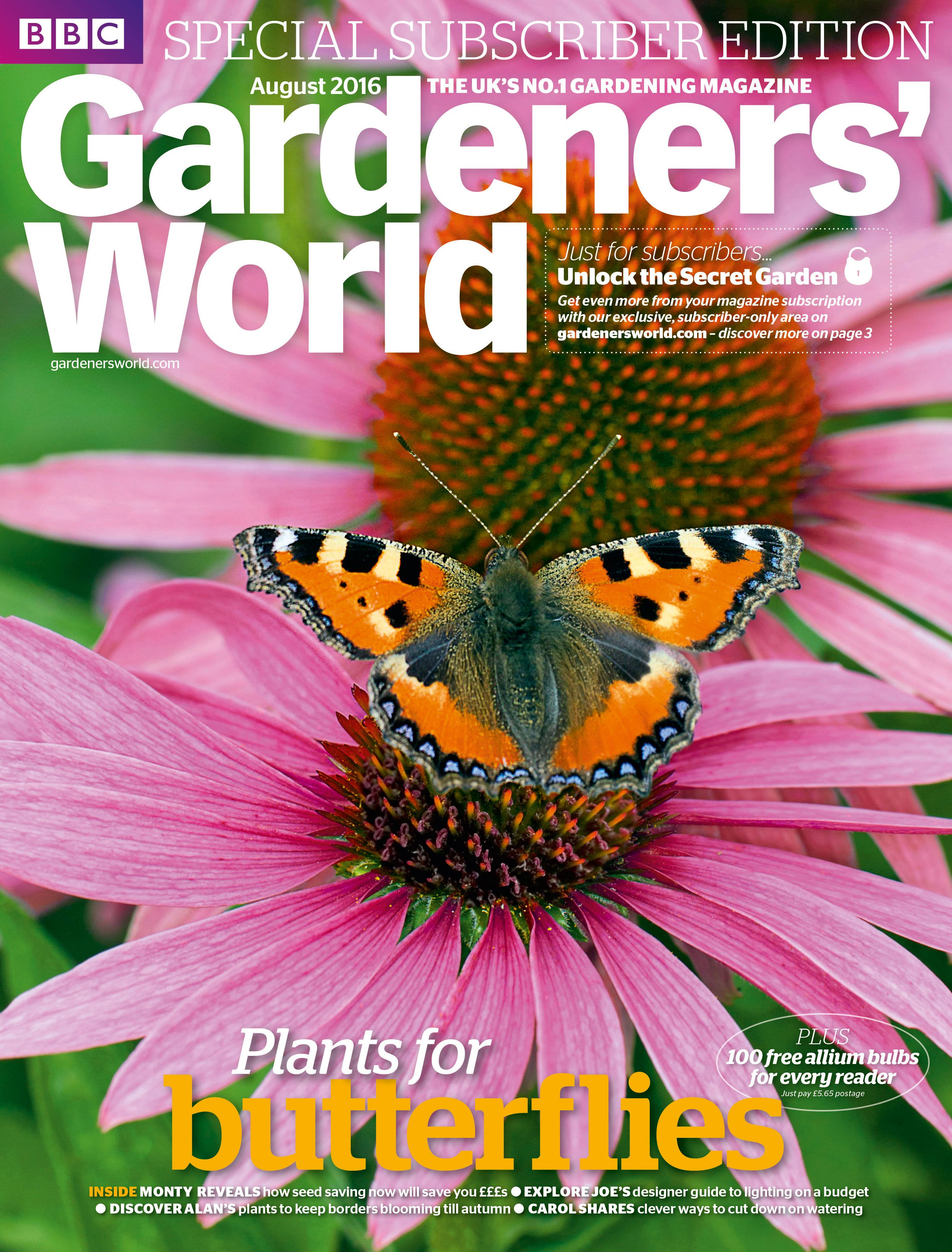 Garden Magazines Free Cover photo small tortoiseshell butterfly feeding on a rudbeckia by cover photo small tortoiseshell butterfly feeding on a rudbeckia by duncan usherardea sisterspd