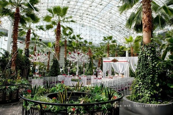 a72e430f39bd148270bca38414875515 - The Crystal Gardens At Navy Pier Wedding
