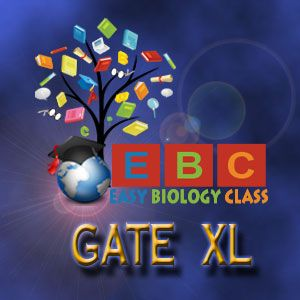 GATE XL 2018 Botany Solved Question Paper with Answer Key ...