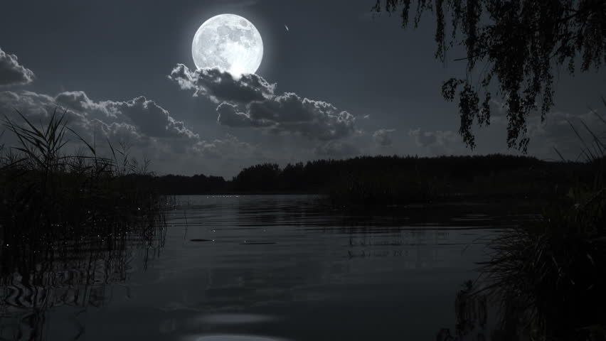 Nature Full Moon Night Landscape With Forest Lake Stock Footage Night Landscape Landscape Full Moon Night