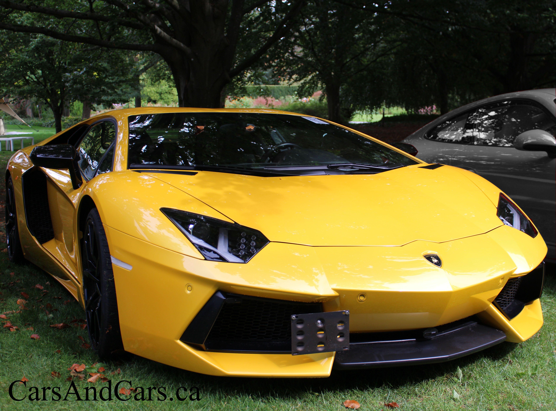 Lamborghini Aventador Sportcar Supercar Luxury Cars