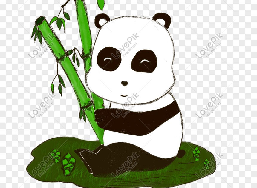 34 Gambar Kartun Panda Makan Bambu Ditaman Safari Cisarua Bogor Ada Panda Lucu Yang Gemesin Sukanya Makan Bambu Cekidot Gaes Pan Kartun Gambar Kartun Gambar