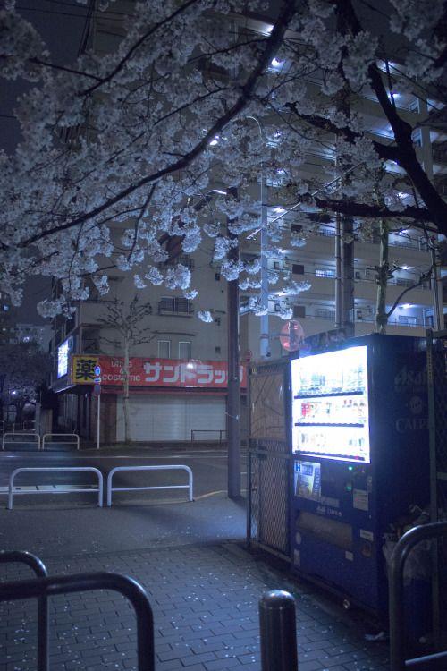 "ourbedtimedreams: "" 神田川・桜・2015_015 by ikumi C """