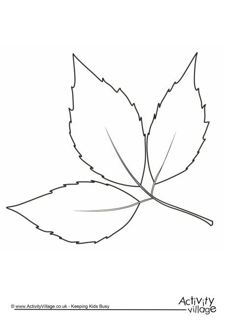 Autumn leaf colouring page 2