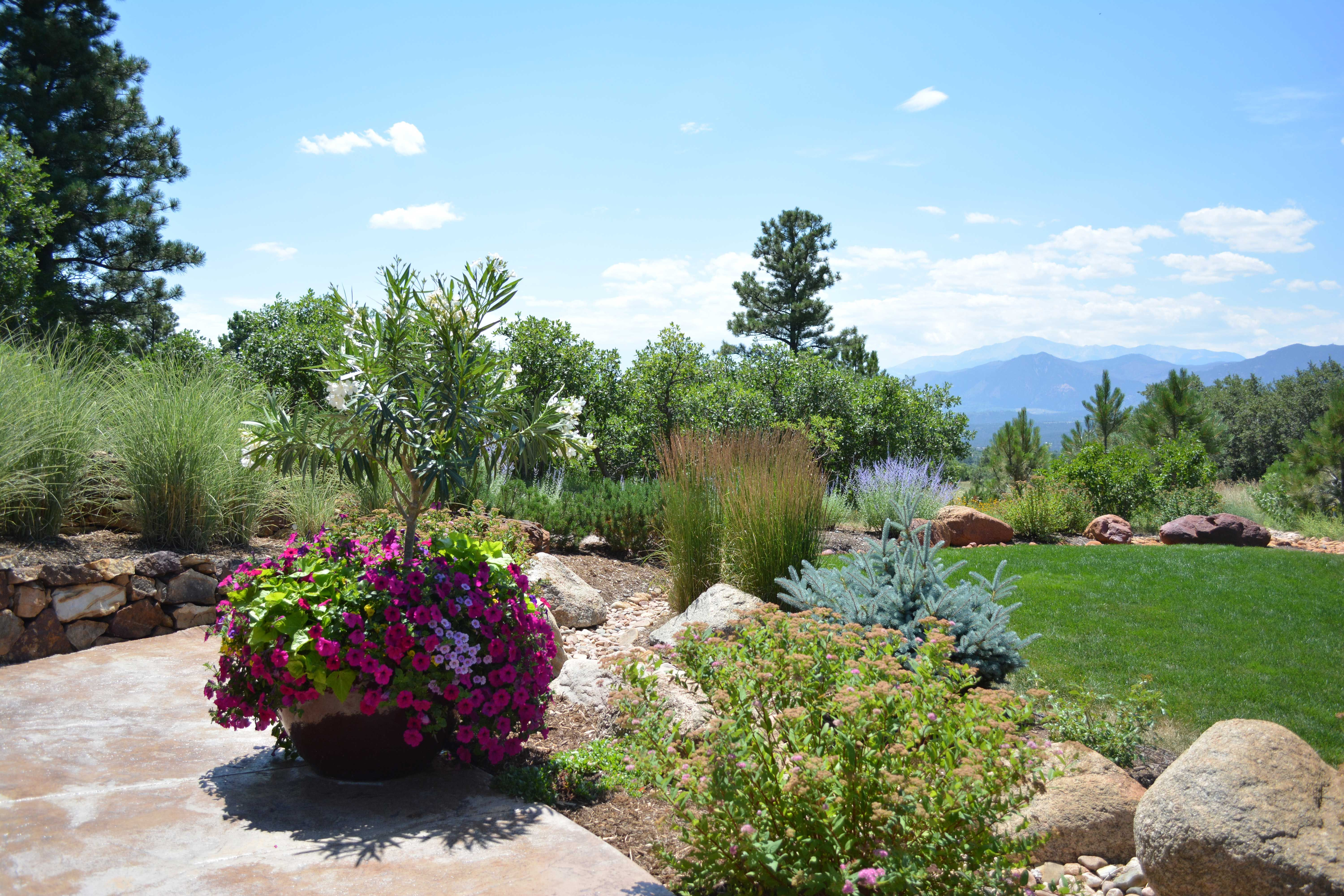 Residential lawn care and maintenance colorado springs residential residential lawn care and maintenance colorado springs mightylinksfo