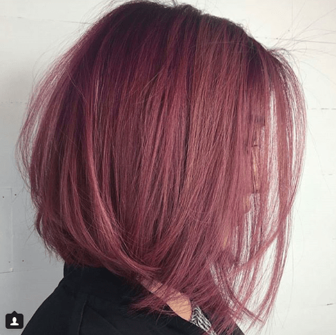 How-To: Dusty Violet Rose - Behindthechair.com