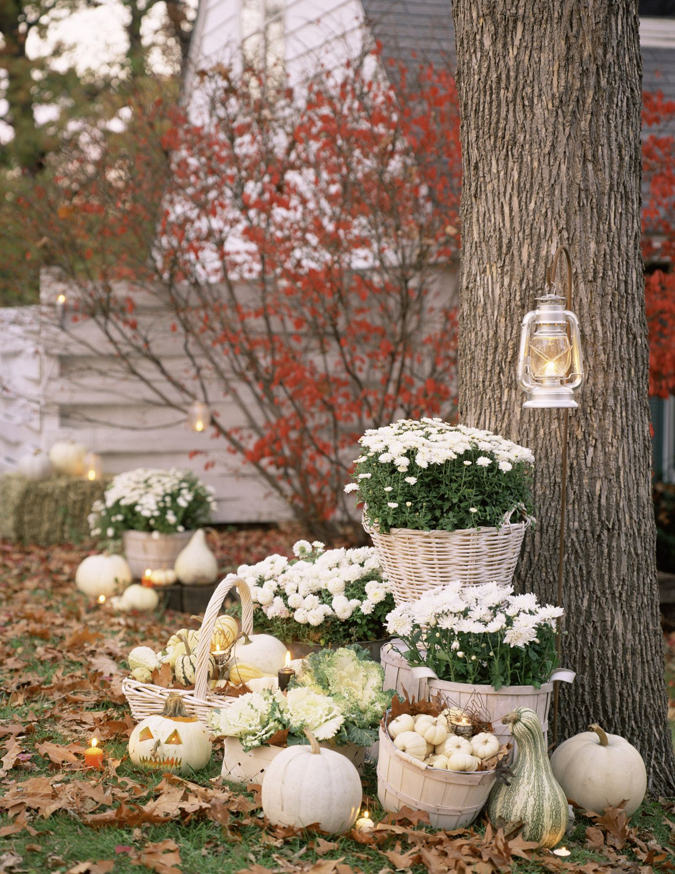11 Elegant Ways To Decorate With Pumpkins This Fall White Pumpkin Decor Halloween Outdoor Decorations Pumpkin Wedding