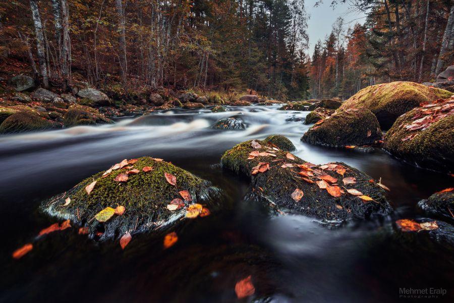 Season of fall by m-eralp.deviantart.com on @deviantART