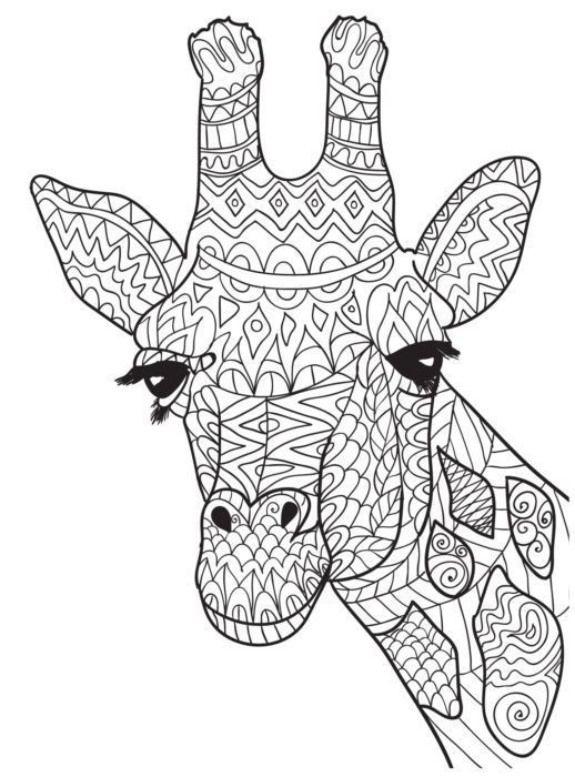 Pin By Macrina Green On Coloring Adult Pinterest Giraffe And Giraffe Coloring Page