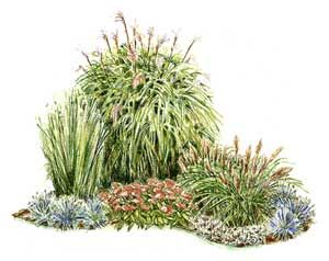 Corner of grasses google images google and gardens for Ornamental grass bed design
