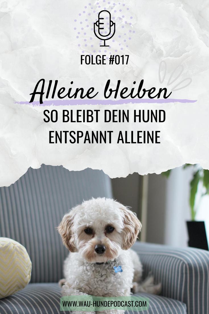 Pin Auf Hundetraining Tipps Zum Training Fur Dich Und Deinen Hund