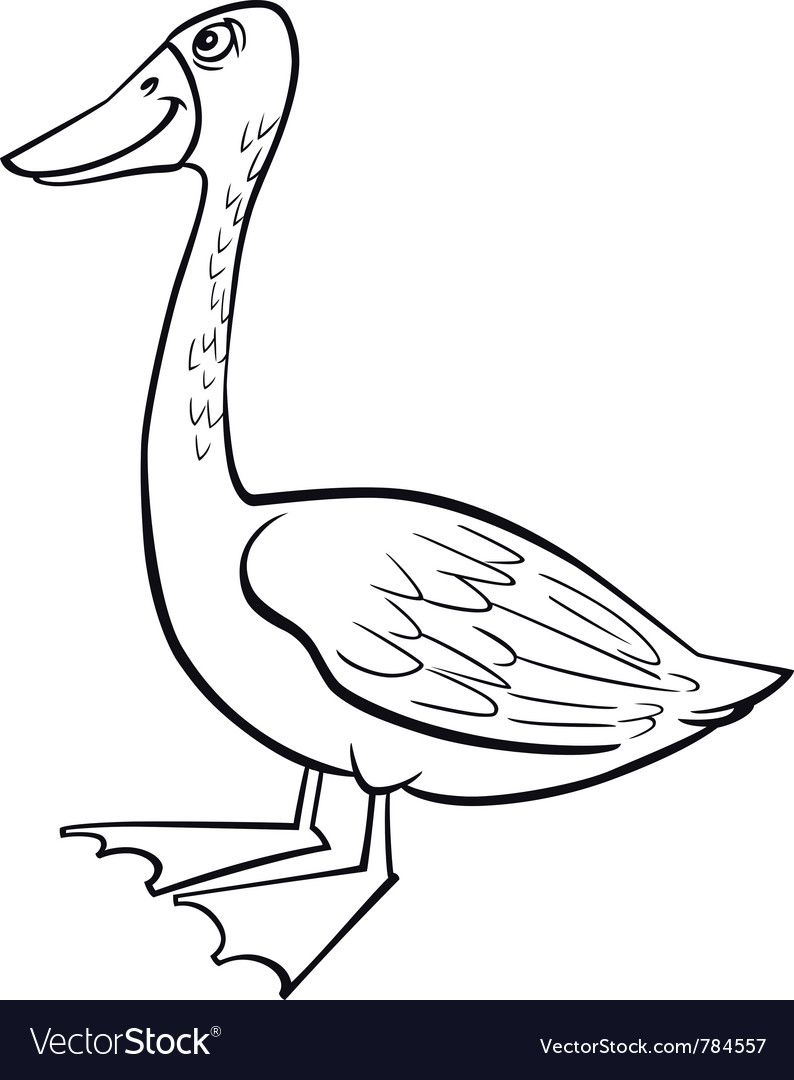 Coloring Page Cartoon Illustration Of Funny Farm Goose Download A