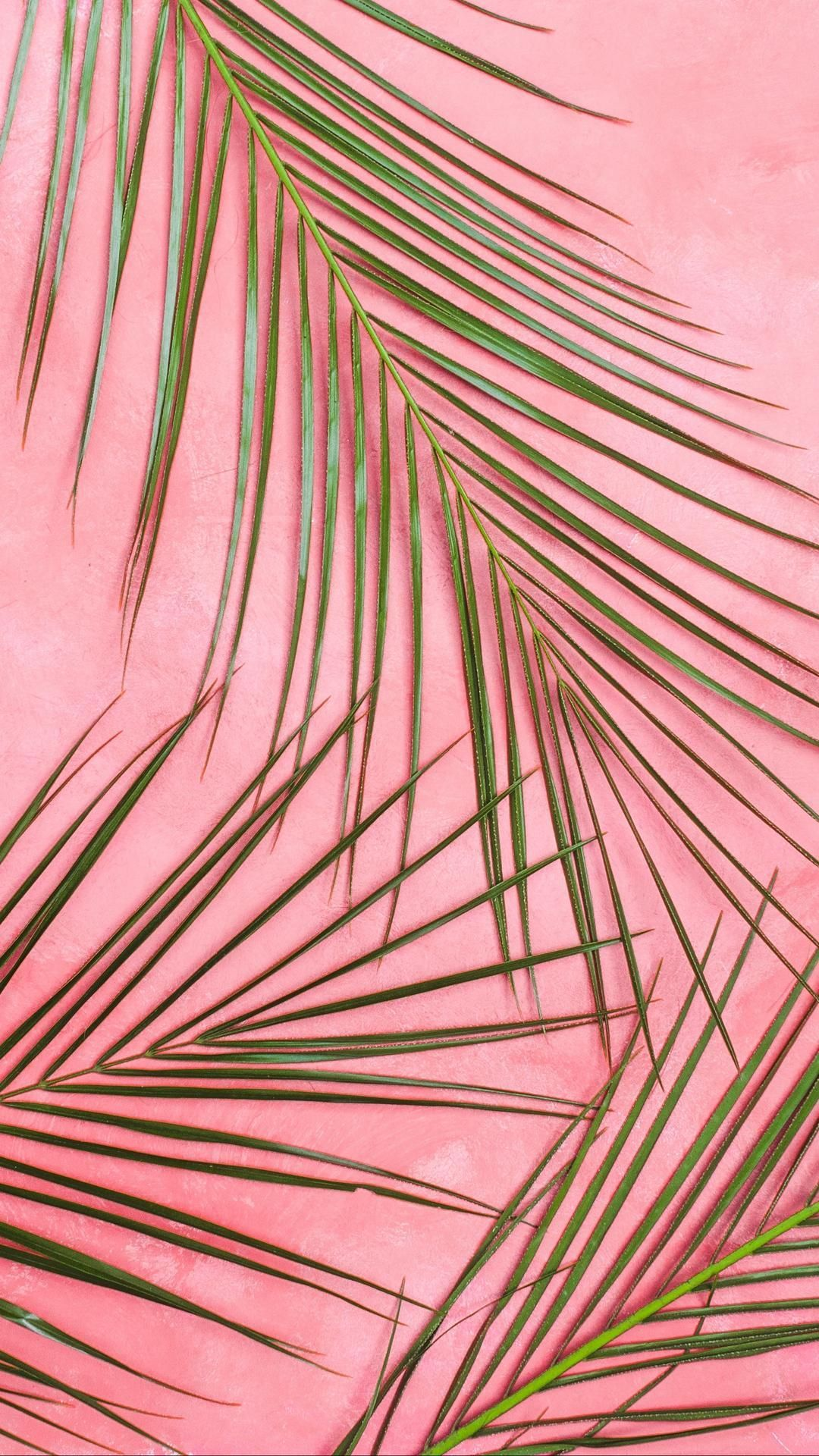 Pastel Pink And Red Wallpaper Home Screen In 2020 Pink And Red Wallpapers Pastel Background Wallpapers Pastel Wallpaper