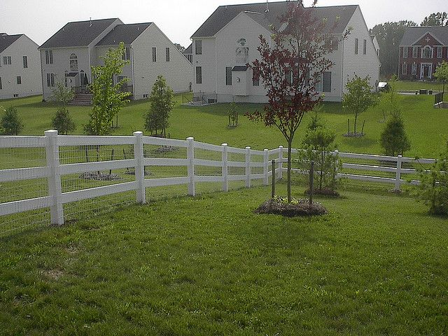 Vinyl 3 Board Paddock Fence With White Wire Mesh Farm Fence Fence Outdoor Gardens