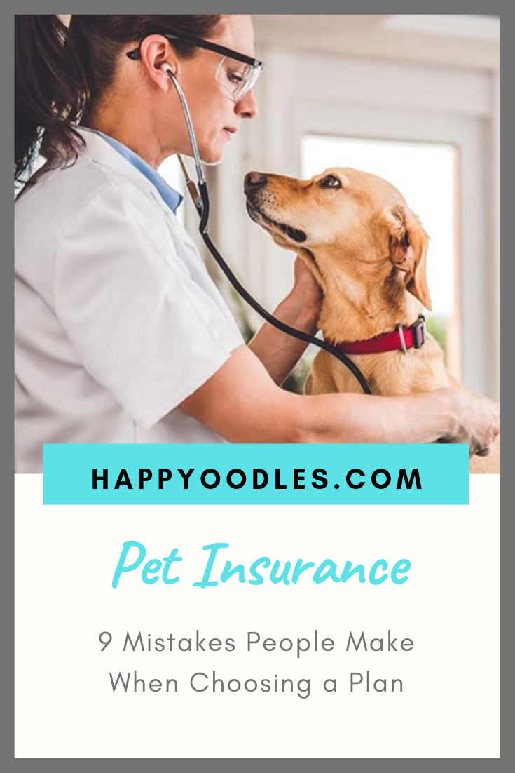 9 Common Mistakes Buying Pet Insurance Happy Oodles Pet