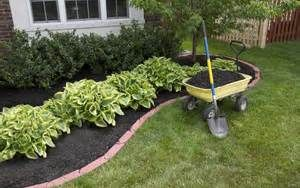 Inexpensive Landscaping Ideas Landscaping By Camila Gabriela