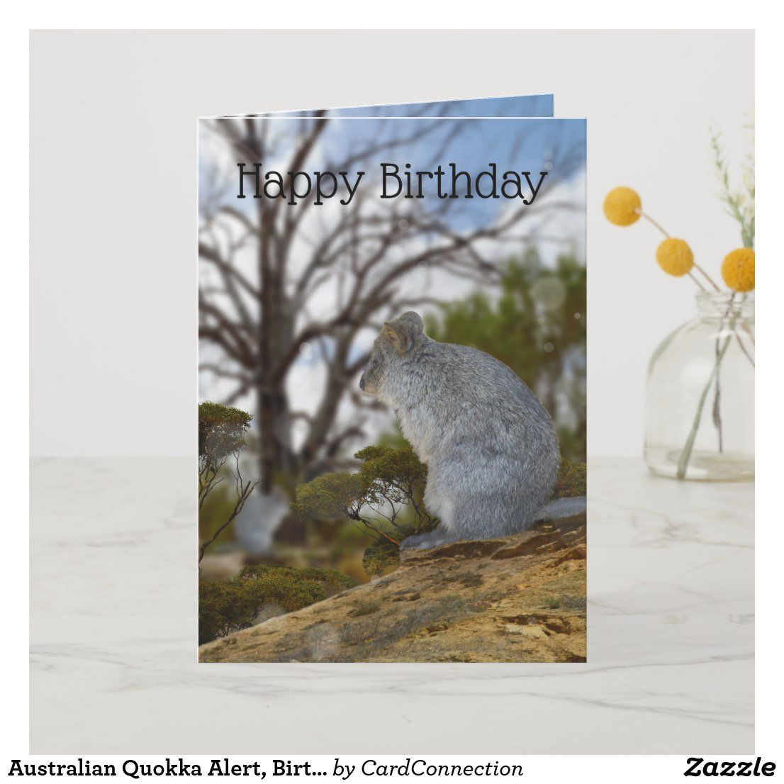 Australian Quokka Alert Birthday Card Card Zazzle Com Au Birthday Cards Cards Birthday