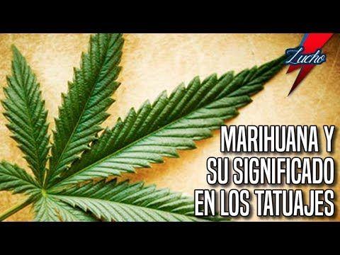 El Significado De La Marihuana En La Cultura Y Los