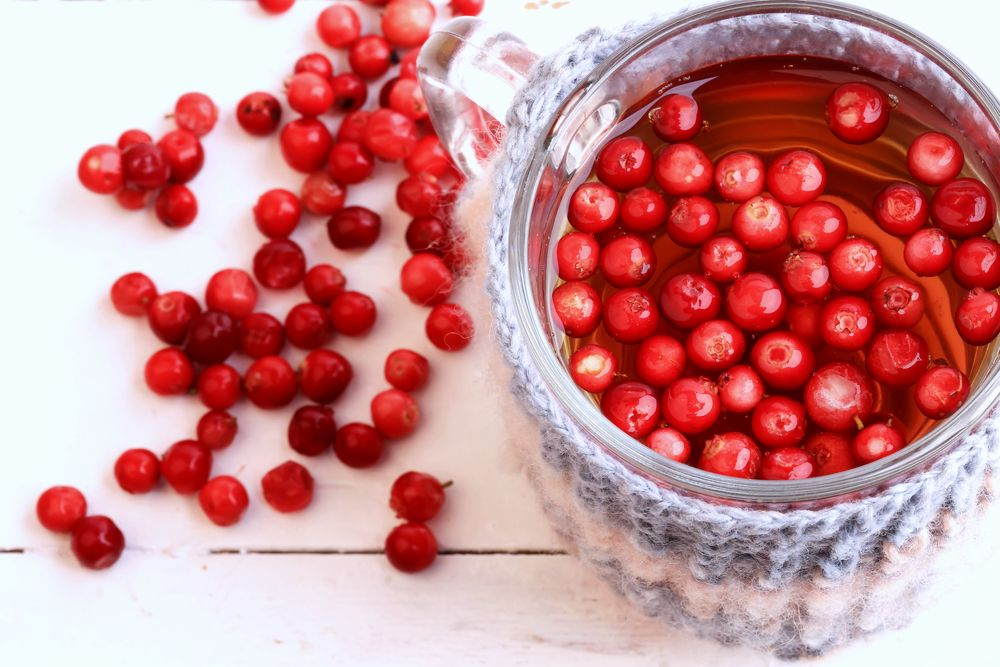 An Acute Dose Of Low Calorie High Polyphenol Cranberry Beverage Improved Antioxidant Status While 8 Week Daily Consumption S Cranberry Extract Health Hdl Cholesterol
