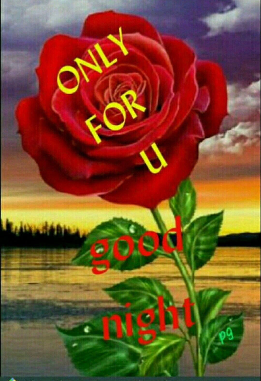 only 4 u romance good night sweet dreams good night night