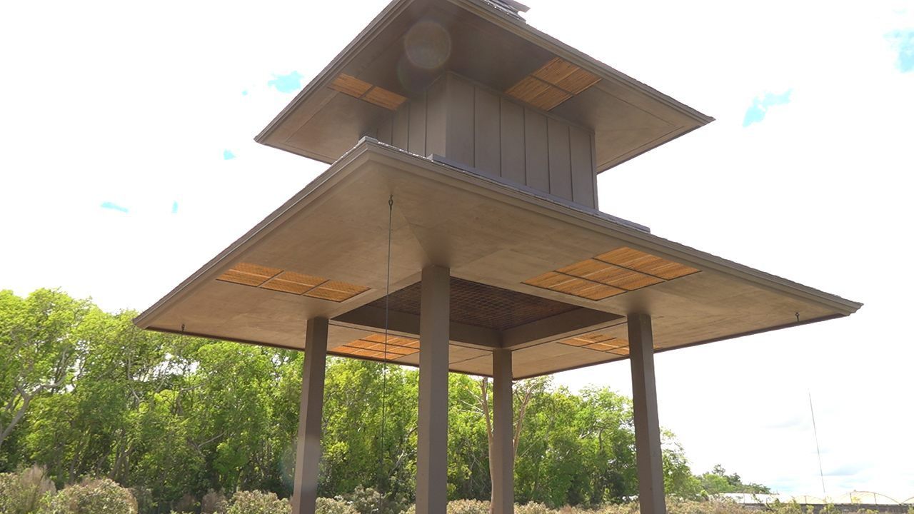 One Of The Largest Bat Houses In The World May Save An Endangered