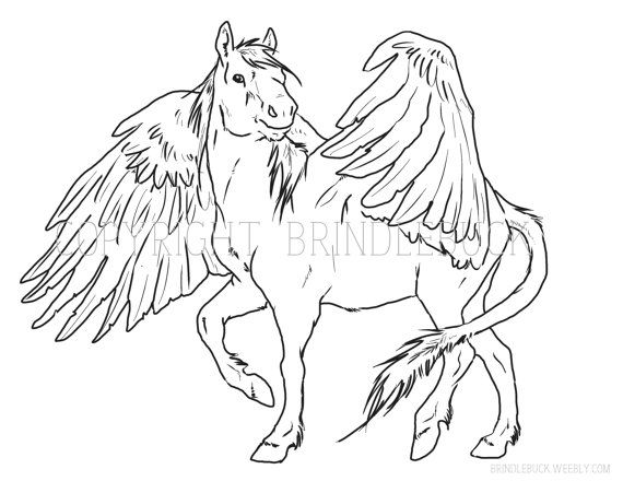 pegasus coloring page download child art adult by brindlebuck
