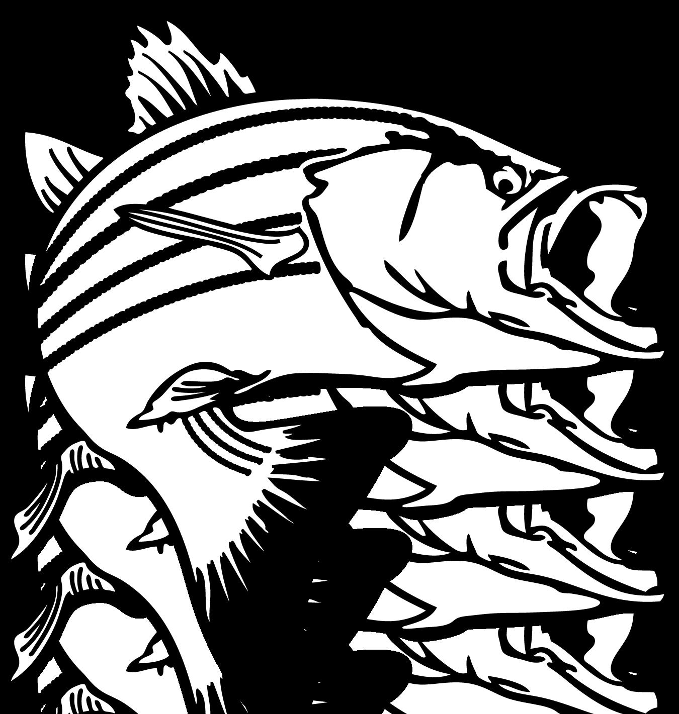 Jumping Bass Fish Clip Art Clipart Panda