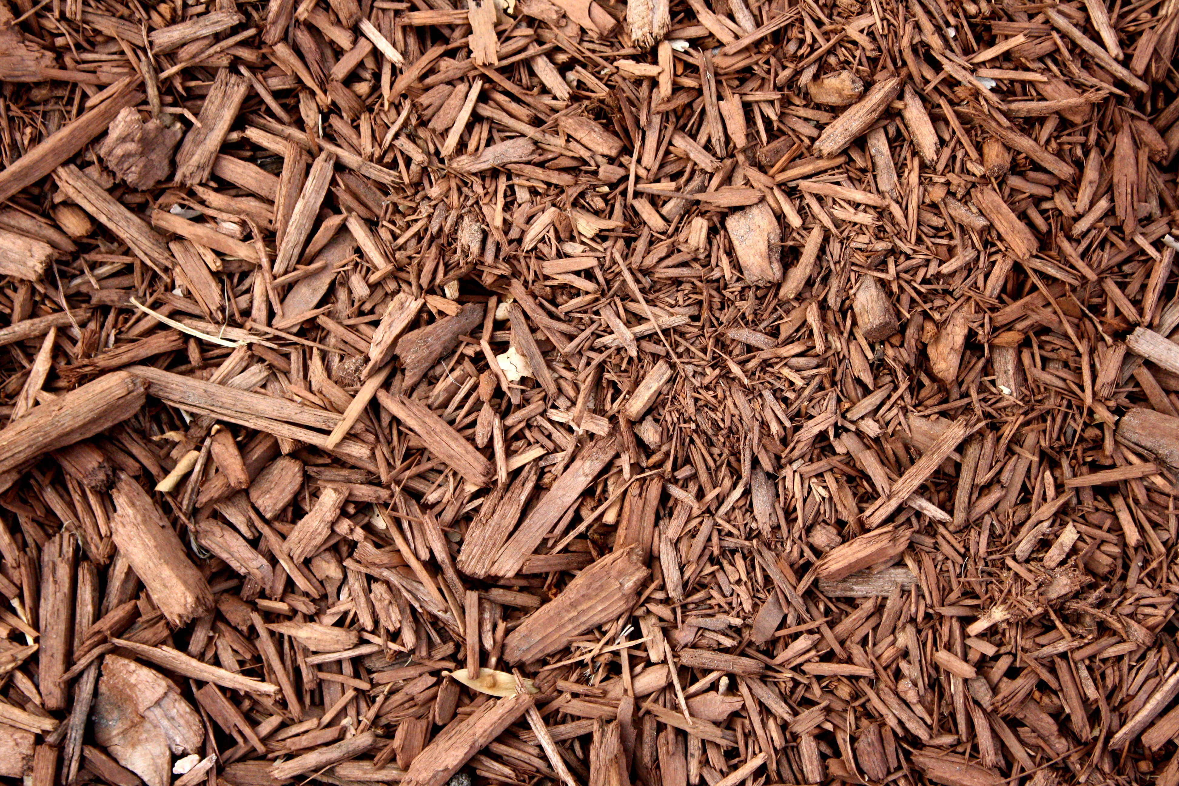 Wood Chips For Landscaping ~ Wood mulch google search types pinterest