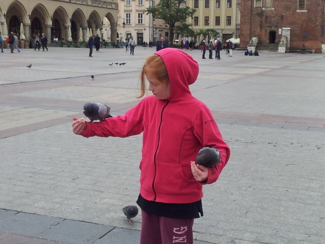 #Krakow #Old #town #Square with the #Pigeons 2013  www.wyldfamilytravel.com