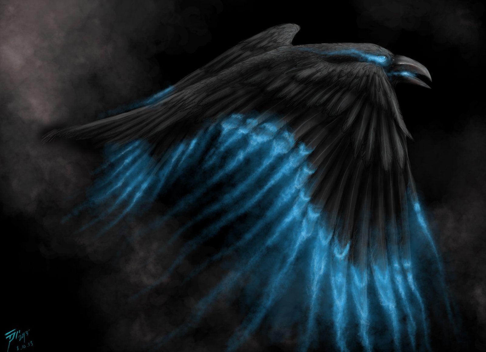 Raven Bird raven looking left bird hd widescreen