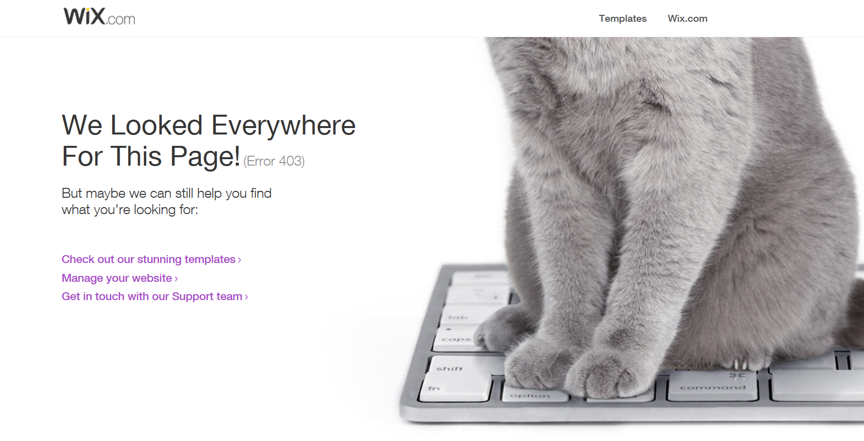 Wix-Error page: love those other options Wix provides | Good