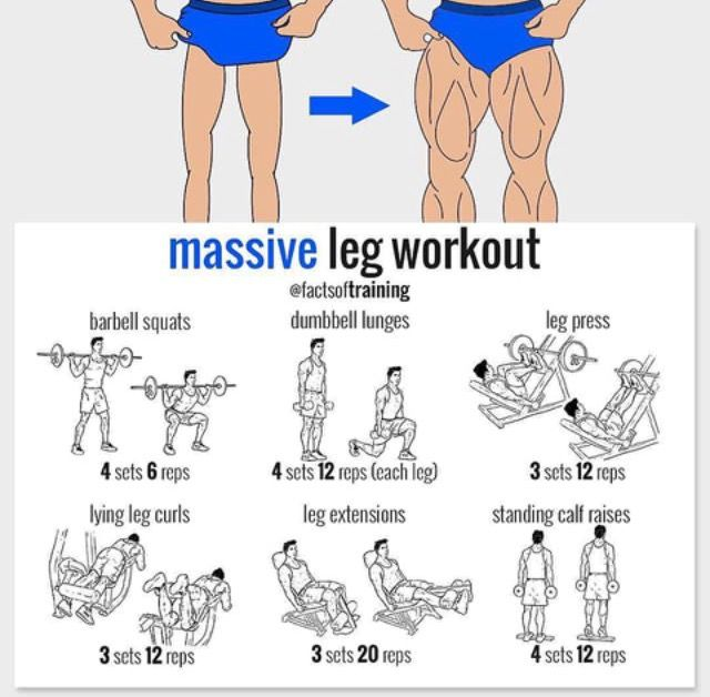 Pin by Mohammed Osama on GYM | Pinterest | Legs, Workout