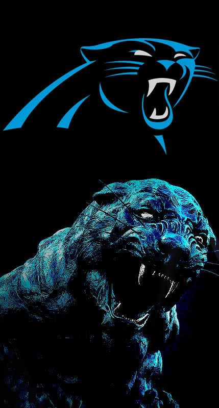 The Carolina Panthers New Logo Is Here Page 18 Sports Logos Carolina Panthers Wallpaper Carolina Panthers Football Carolina Panthers Logo Carolina panthers wallpaper hd